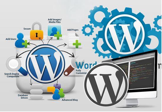 Dịch vụ lập trình website bằng WordPress – PHP